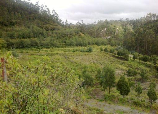 Cierre de mina con plan de remediación ambiental concluye con éxito en Imbabura