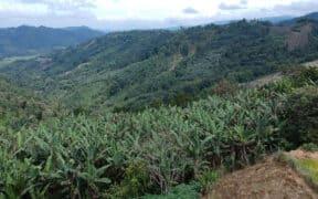 Proyecto Río Magdalena mineria ecuador